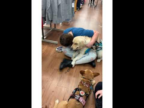 Aggressive Pet In Walmart Causes Medical Episode