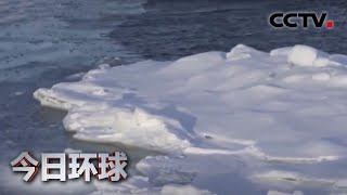 全球变暖 北极海冰或在2035年消失  《今日环球》CCTV中文国际 - YouTube