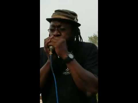 Roharpo the Bluesman @ Just Bring it Jam with Multiple musicians