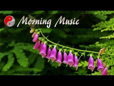 Morning Music Instrumental: Dreamy, Blissful, Royalty Free Music for Positive Energy & Inner Peace