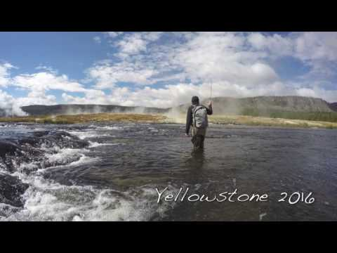 Fly Fishing in Yellowstone National Park 2016