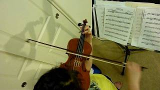 Adagio Violin Bow