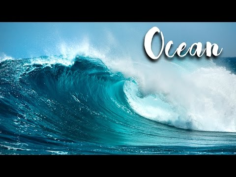 Ocean (a Body of Saline Water) | Extreme Enviornments EP01