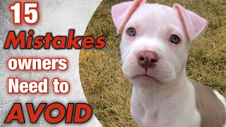 15 mistakes new pit bull owners make!