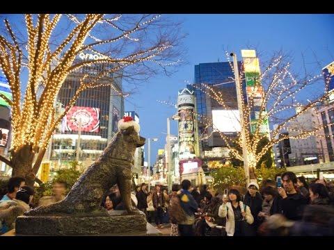 Japan - Shibuya Station, Tokyo. (Hachikō Statue)