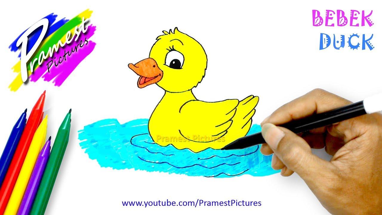 Gambar Bebek Dan Angsa