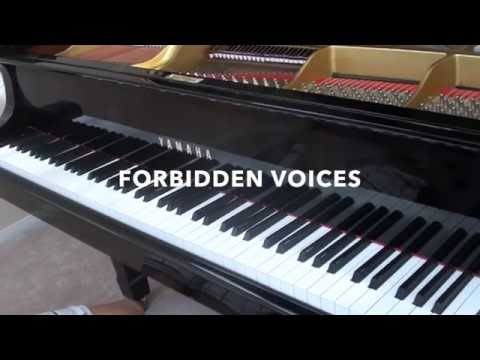 Видео, Forbidden Voices - Martin Garrix Piano Cover