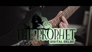 The Prophet Digital Delay - official product video