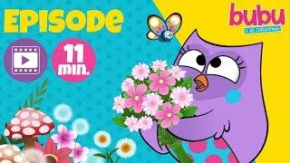Flower, little flower, pretty flower! - Full Episode - Bubu and the Little Owls