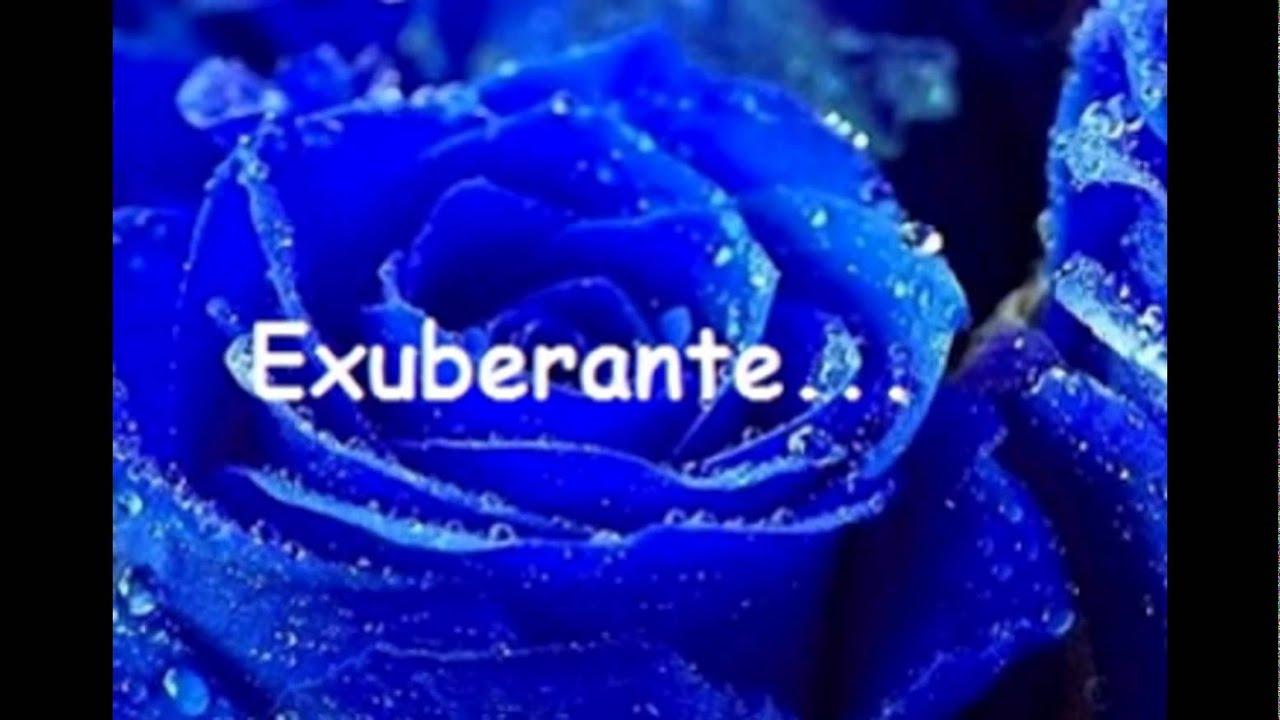 Rosas Azuis Para Você!