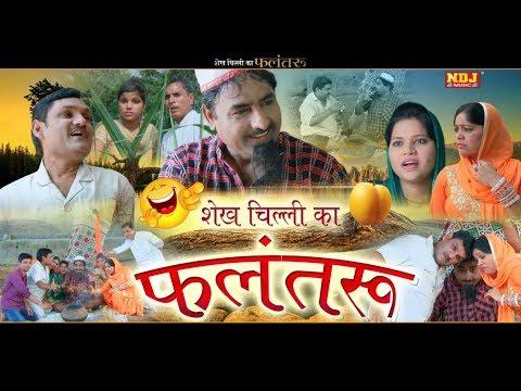 #शेख चिल्ली का फलंतरू #Shekh Chilli Bana Tantrik #शेख चिल्ली की सबसे हिट कॉमेडी #HariramTufan #NDJ