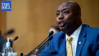 'Sends Shivers Down The Spine': Tim Scott Attacks Democrats' New IRS Proposal