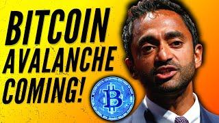 Chamath Palihapitiya Bitcoin - 'There is a AVALANCHE coming for Bitcoin!' | Bitcoin Price Prediction