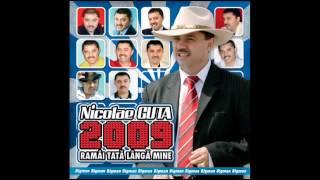Nicolae Guta - Nebun dupa tine