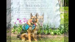 Michigan War Dog Memorial Inc. Clean Up May 18, 2013