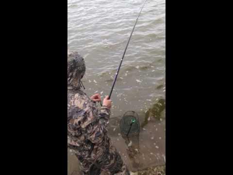 Рыбалка 2016 г. Егорьевский рыбхоз. Карп