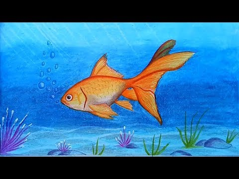 How To Draw A Scenery Of Goldfish With Oil Pastel.Step By Step(easy Draw)