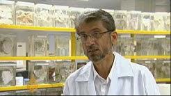 hqdefault - Kidney Transplant Law In Pakistan