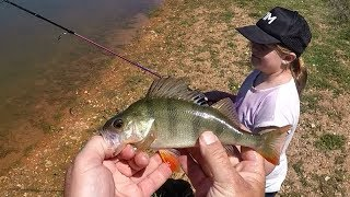 Redfin perch fishing with kids is the best type of fishing