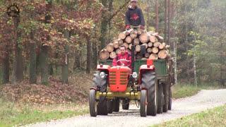 Wywóz drewna z lasu - Zetor 4011