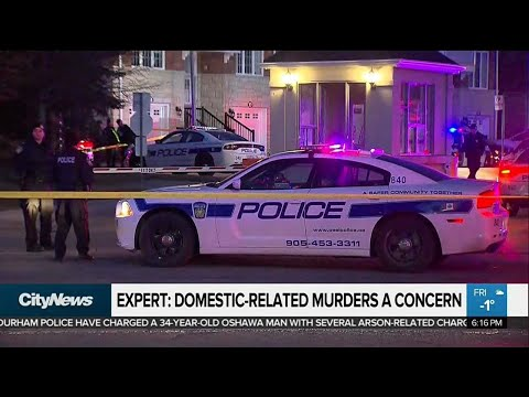 This year's number of domestic-related homicides concerning: expert