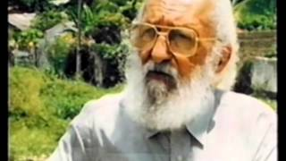 Cátedra Paulo Freire: Educación y Pedagogía en Diálogo con la Sociedad