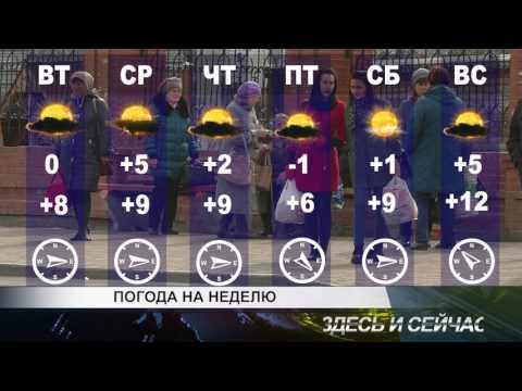 погода на неделю