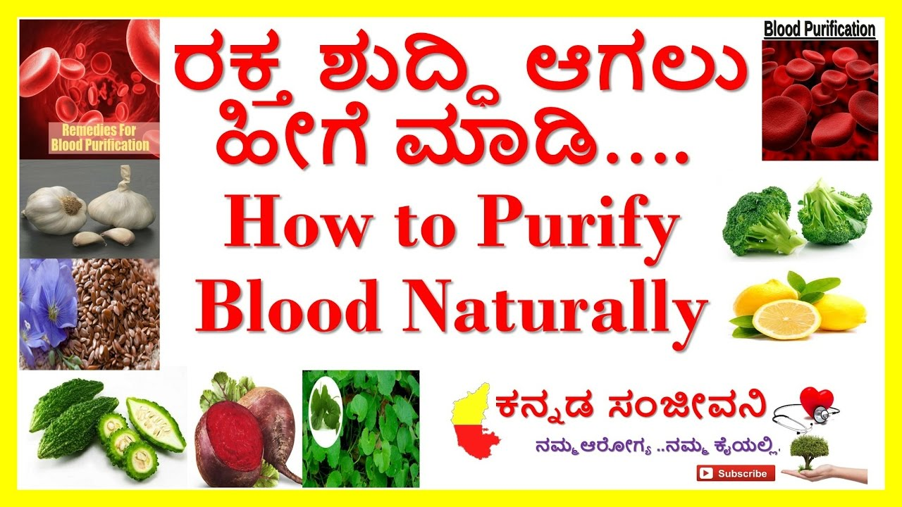 how to purify blood naturally at home  20 best home remedies for
