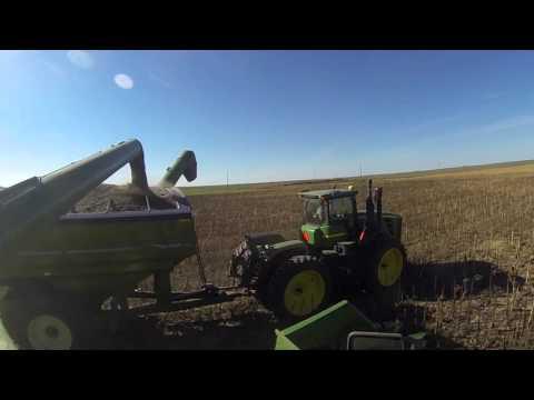 2015 Nebraska Sunflower Harvest - GoPro