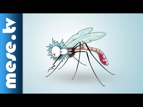 Iszkiri Zenekar: Megfogtam egy szúnyogot | MESE TV thumbnail