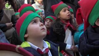 """""""Pinheirinho"""" juntou centenas de crianças no Centro Histórico de Guimarães"""