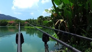 Is GILLHAMS FISHING RESORT WORTH IT? 2 DAYS OF FISHING in KRABI THAILAND