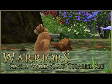 The Question of Honeywish's Loyalty 🌿 Warrior Cats Sims 3 Legacy - Episode #24