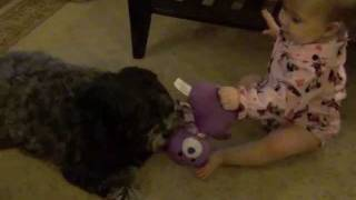 Maui VS. Lizzy! Intense Fight Between a Baby & a Dog Thumbnail