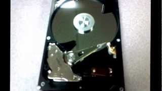 Hard Drive Click of Death Sound