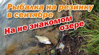 Рыбалка на резинку в сентябре На не знакомом озере