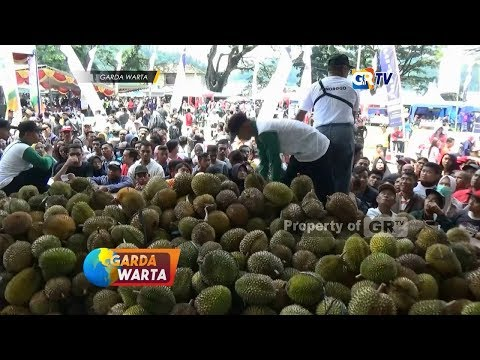 ponorogo---petani-gelar-pesta-dua-ribu-durian-gratis