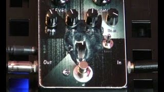 MASTER EFFECTS : WOLFY : Dual Rec Pedal : Demo & Review