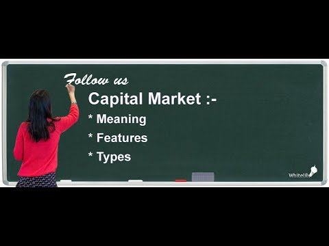 Capital Market Chapter 10 Class 12 Business Studies