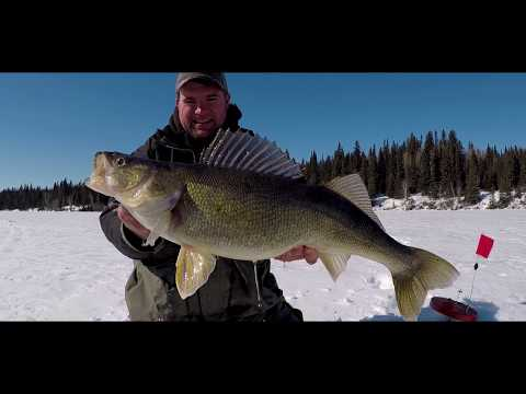 Epic Manitoba Ice Fishing Adventures - Wekusko Falls Lodge
