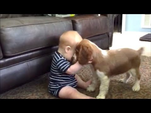 BABY animals + BABY humans = LOTS OF FUN! 👶 FUN and CUTENESS overload!