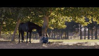 Black Beauty | Official Trailer | Nov. 27