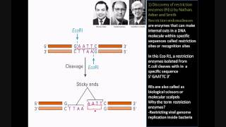The Birth of Modern Biotechnology