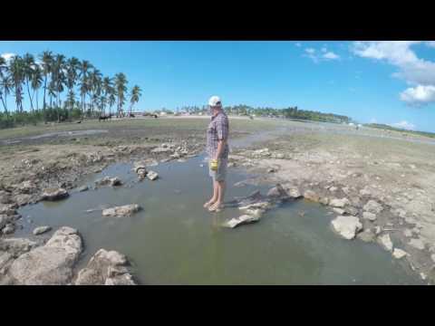 Community of Hope Haiti - Clean Water Well Project 2017 - Karst Spring La Gonave Video 1