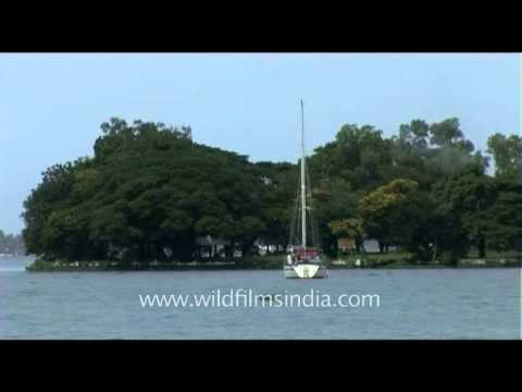Cochin, one of the finest natural harbours in the world