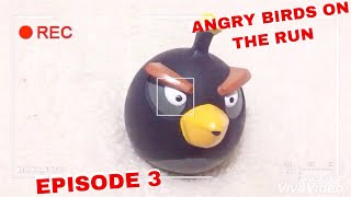 Angry Birds on The Run | Pigs time to abduction. Лучшее! Watch until the end!