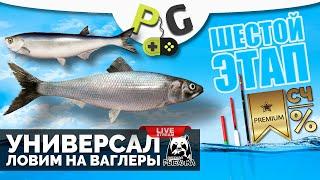 Русская Рыбалка 4 Стрим Прокачка УНИВЕРСАЛА для 6 го этапа Стрим 17 Ловим на ваглеры