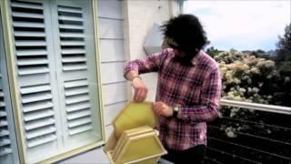 Urban Bee Hive: Designer Jonathon Swan