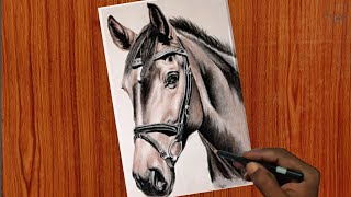 How to draw a Horse colour pencil Drawing | Time lapse | Beginner Arts |