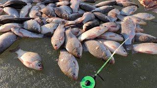 Пулемётный ЖОР КАРАСЯ и ещё 6 ВИДОВ РЫБЫ Зимняя рыбалка по последнему льду 2021